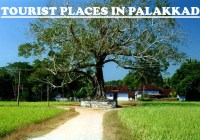 places to visit near palakkad