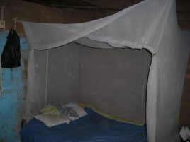 Bed net in use