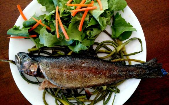 Baked_trout_dinner