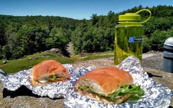 Picnic_lunch_by_damn_Litchfield