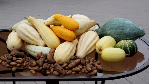 september_harvest