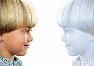 gemello invisibile - Il tuo GEMELLO di carta - non esiste ma possiede tutte le tue cose