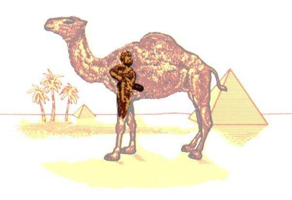 mara79 - Messaggi subliminali nelle Camel