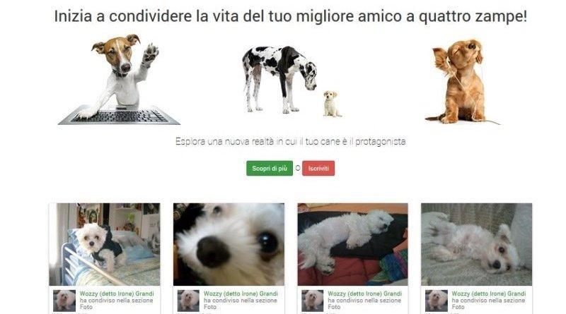 terrorismo 150217122101 fotogallery4 - Nuovo Social Network per animali