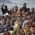 immigrati