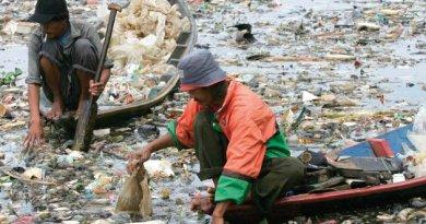 Indonesia - Ambiente : come ci siamo arrivati?