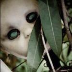 Isola delle bambole 9 150x150 - 10 luoghi più horror del mondo