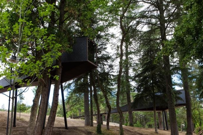 Pedras Salgadas Park Treehouse