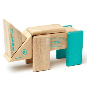 Tegu future robo magnetic blocks