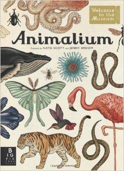 2-animalium-amazon