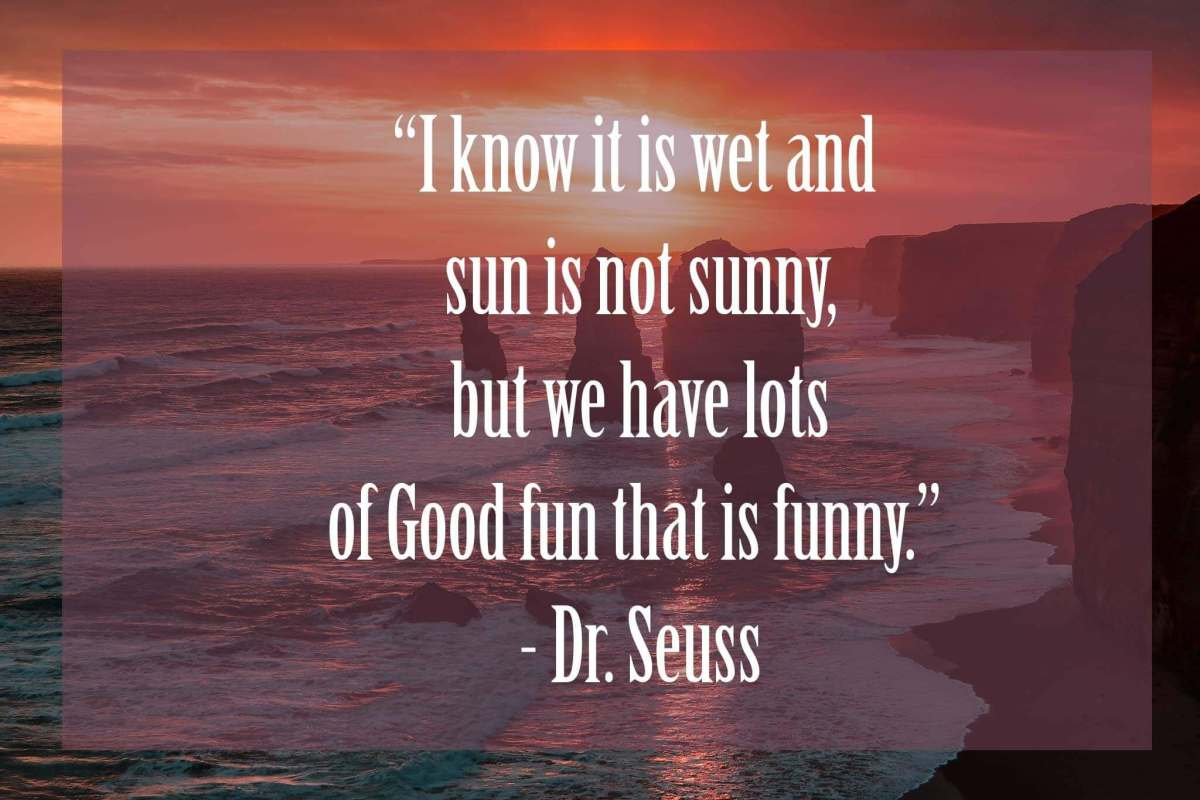 I-know-it-is-wet-and-the-sun-is-not-sunny | 37 Dr Seuss Quotes Which Will Inspire You
