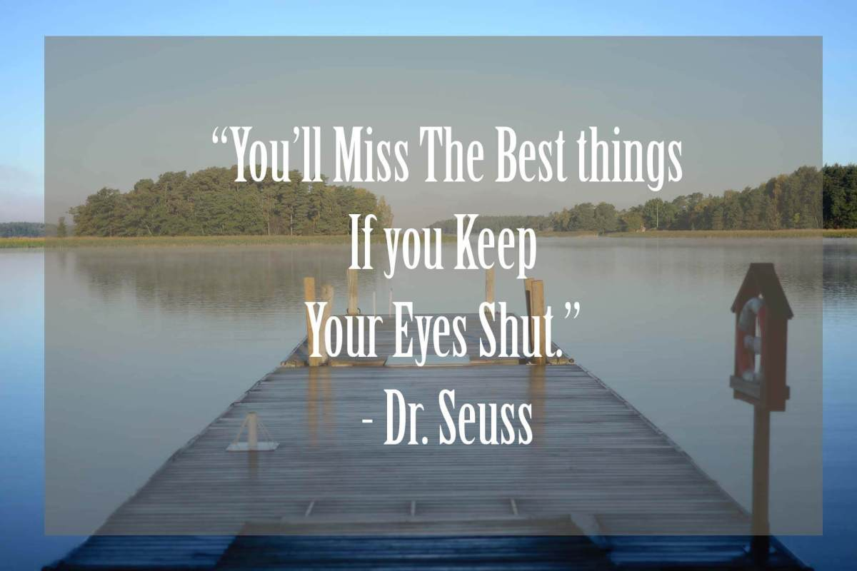 Youll-miss-the-Best-Things | 37 Dr Seuss Quotes Which Will Inspire You