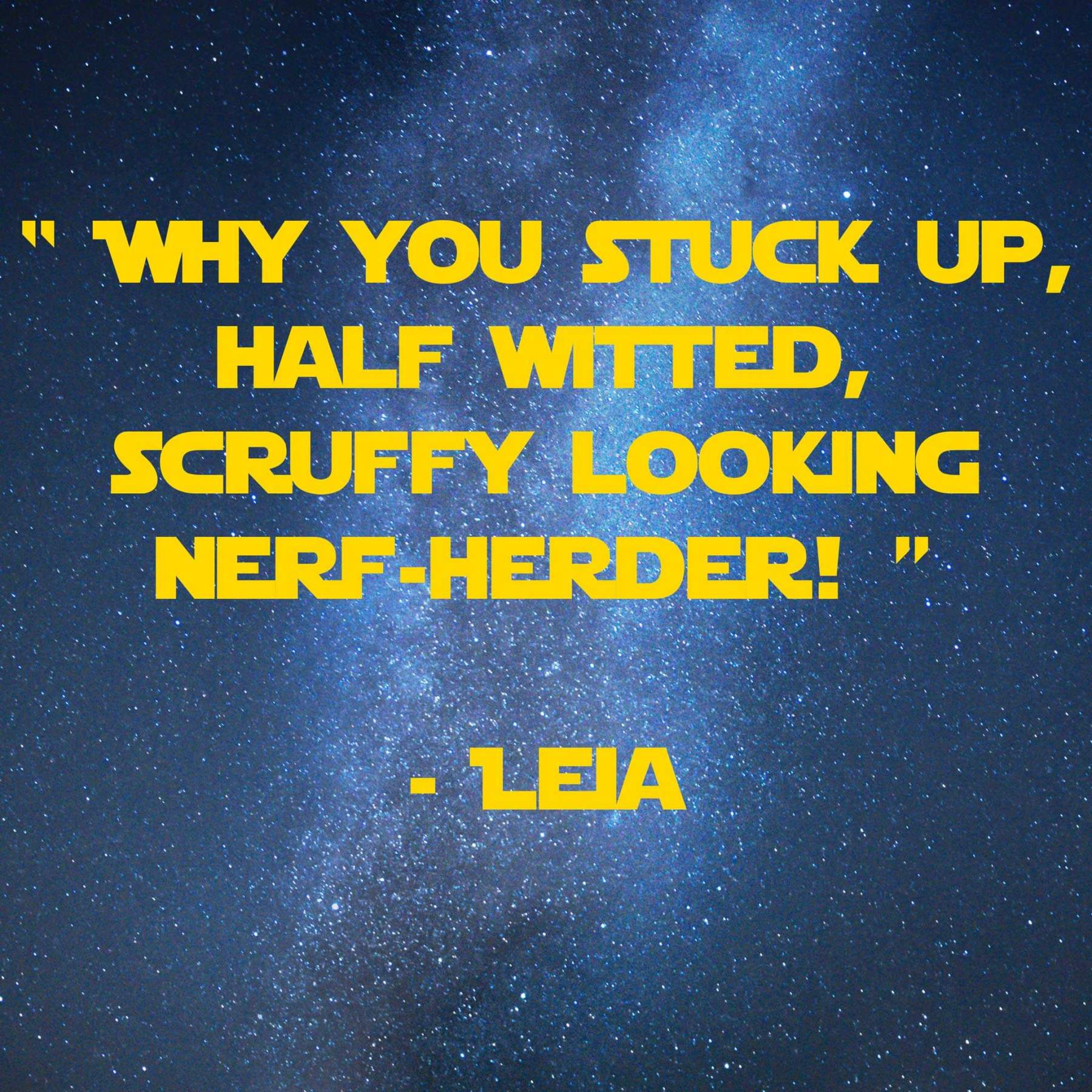 Nerf-herder | 31 Memorable Star Wars Quotes for Geeks