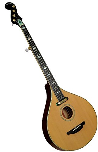 PC-Banjola Electric Banjo by Gold Tone