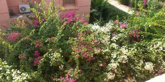 Belle Villa à louer pour longue durée sur route de Fes
