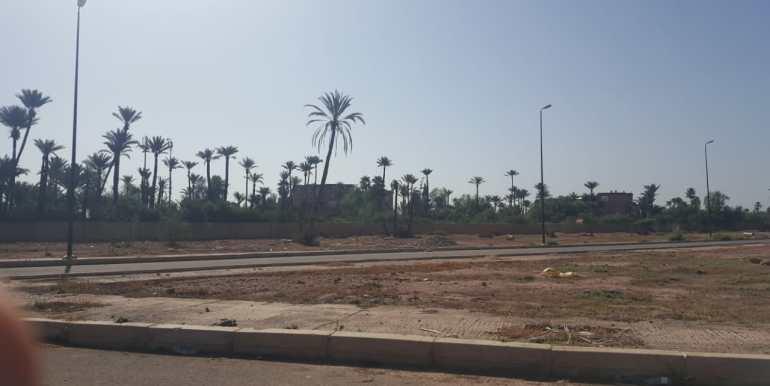 terrain 2000m² à la palmeraie (3)