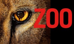 zoo-dizi-tv-series