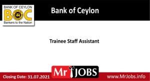 boc bank trainee staff assistant