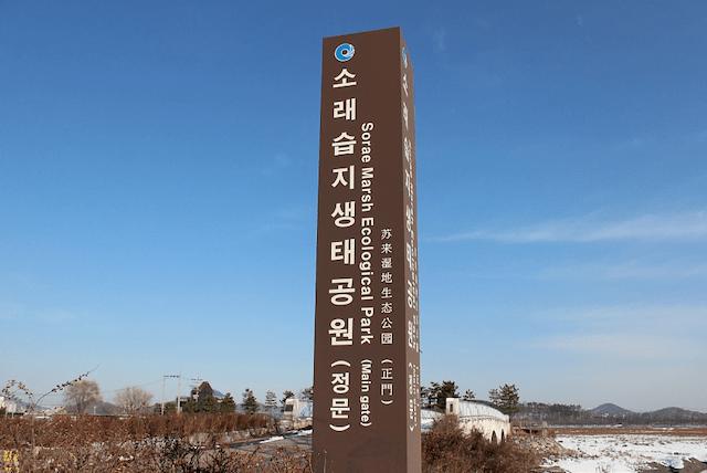 Sorae Ecological Park Incheon