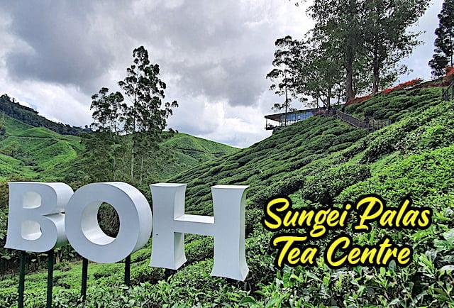 Masuk Percuma Ke BOH Sungai Palas Tea Centre 01 copy