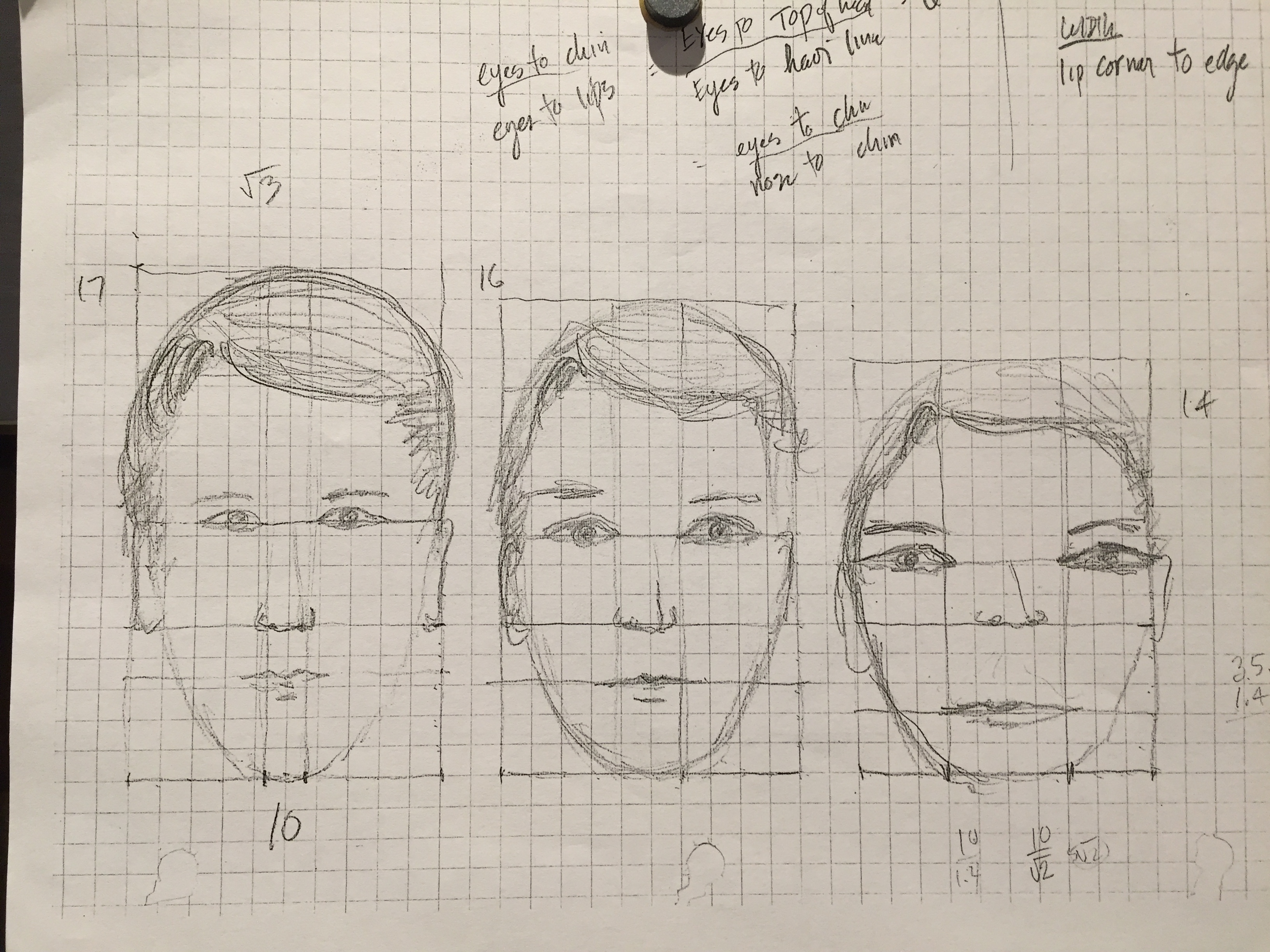 Golden Ratio Amp The Human Face Activity