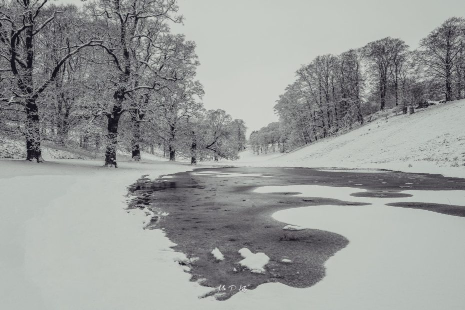 Frozen puddles of water January 2021