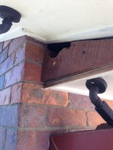 Possum proofing different to possum removal