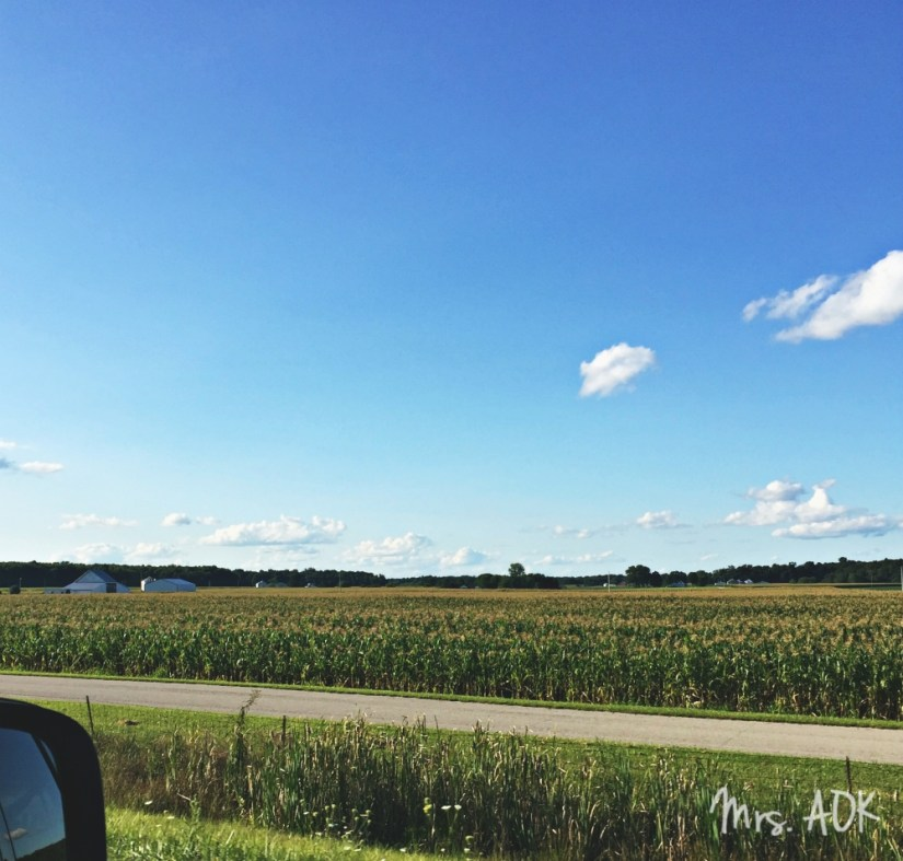 Across the Country with 3 Kids, a Dog, and Our Sanity| Mrs. AOK, A Work In Progress| Part 1| Travel| Traveling with kids| America