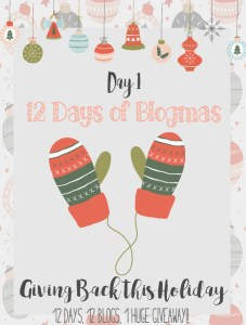 Merry Blogmas 12 Days, 12 Blog + 1 Huge Giveaway {Day 1 Giving back}