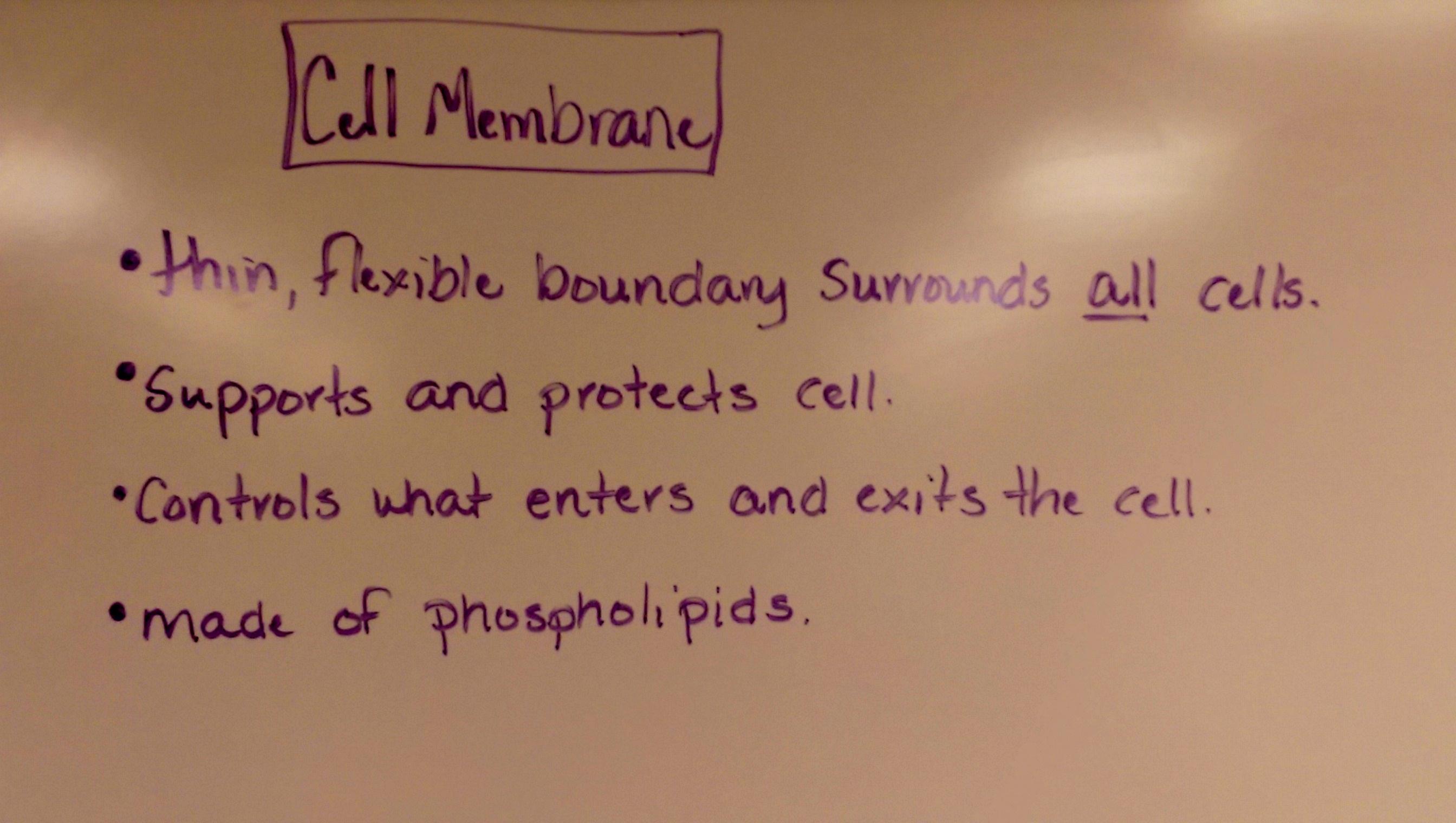 Unit Five Cell Biology