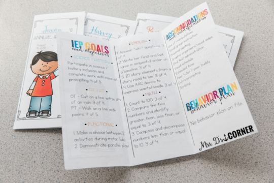 iep at a glance brochure
