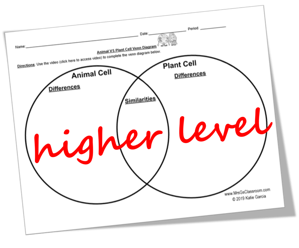 Free Video Notes Amp Venn Diagram For Plant Amp Animal Cells