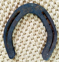 Mrs. Padilly's Good Luck Horse Shoe