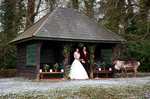 Bride, Groom & Raindeer at The Summer House