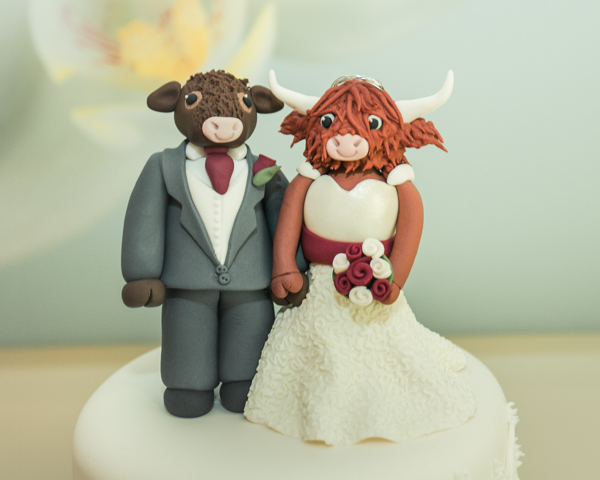cow theme wedding , cow bride and groom cake topper, M.P Media Photography, Kelham House wedding