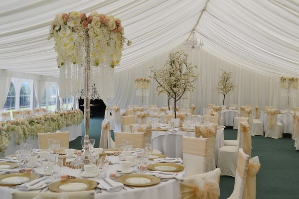 chillie Breeze, wedding decor, wedding stylists, blossom trees, white blossom trees, cherry pink trees, wisteria trees, autumnal trees, venue stylists, venue styling in Shropshire