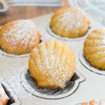 French Lemon Madeleines 法式檸檬貝殻蛋糕