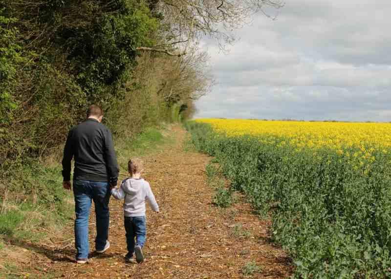 Cheltenham Cotswolds Yellow Fields