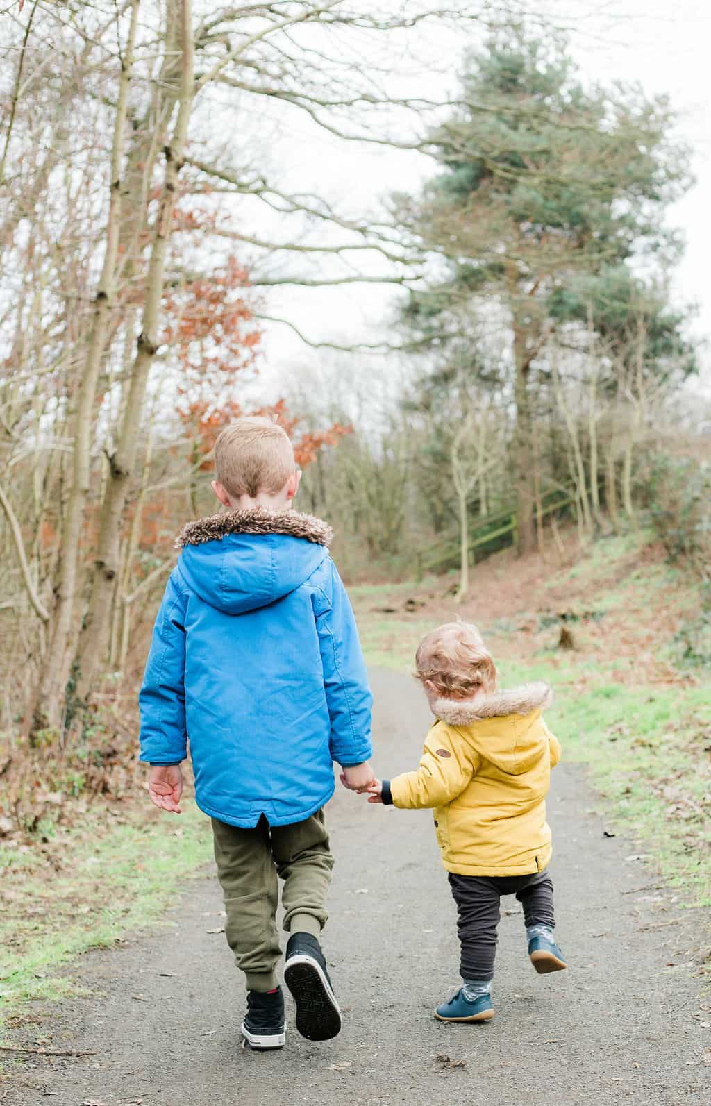 Brothers hand-in-hand walking forest