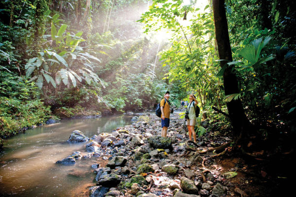 hiking & wildlife in corcovado national park