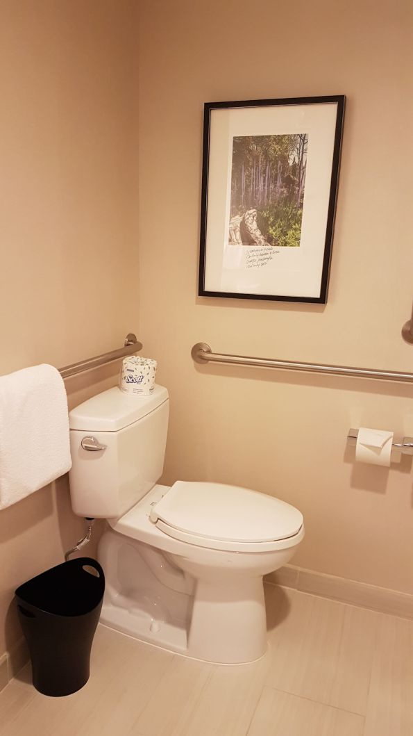 Toilet with hand grab rails