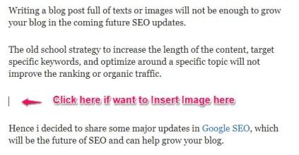 Google Doc Insert an Image