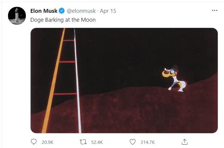 Elon must tweet on dogecoin