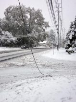 Snow in Westwood (10/29/11).