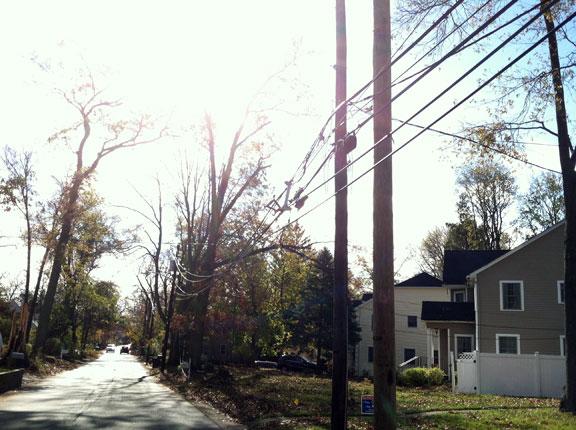 Hurricane Sandy aftermath along Sand Road, Westwood, NJ (11/5/2012).