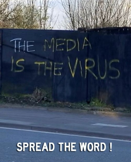 The fake news media is the real virus and enemy.