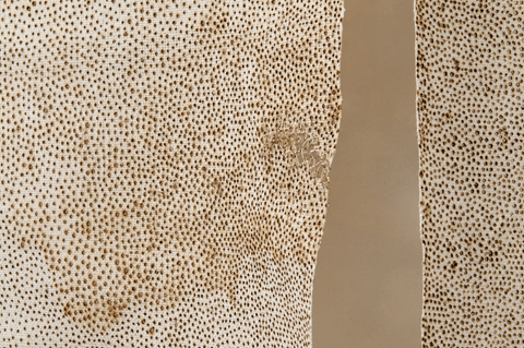 John Paul Morabito - Warp Stripe Symmetry