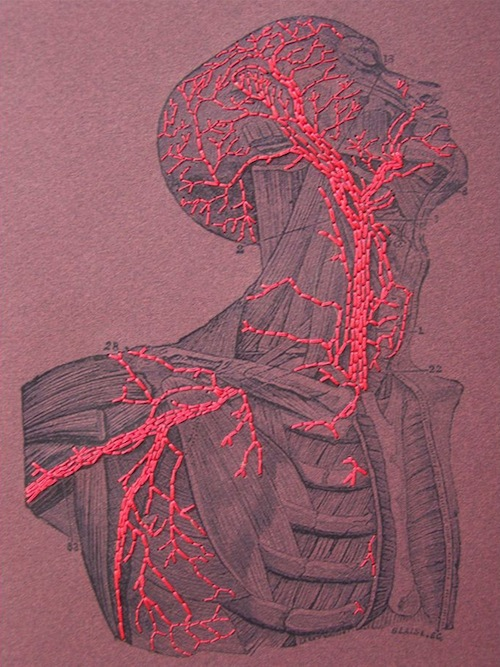Anatomy Notebook by Fabulous Cat Papers  (Hand embroidery)