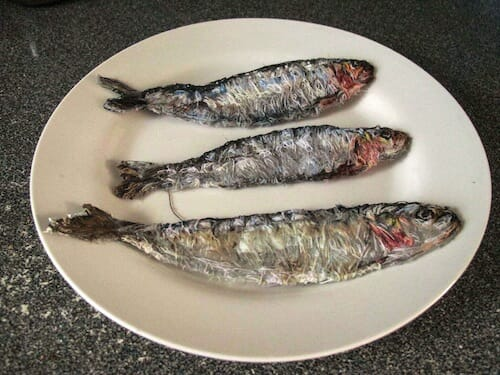 Emily Tull - Sardines - Hand Embroidery