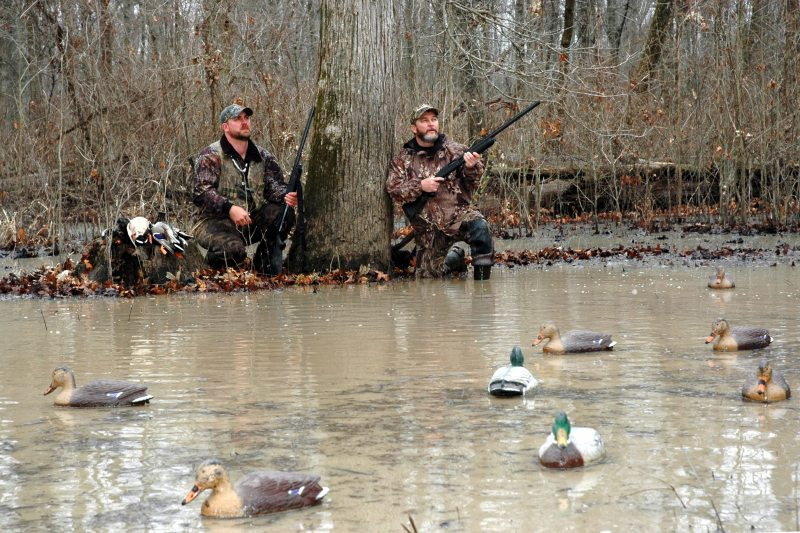 Scott Dickerson, left, and Mike Giles watch for more birds to come to the mallard decoys in their flooded timber pothole.
